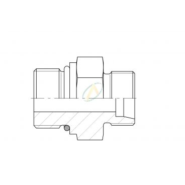 Adaptateur droit mâle 12L DIN - mâle 3/8 BSPP
