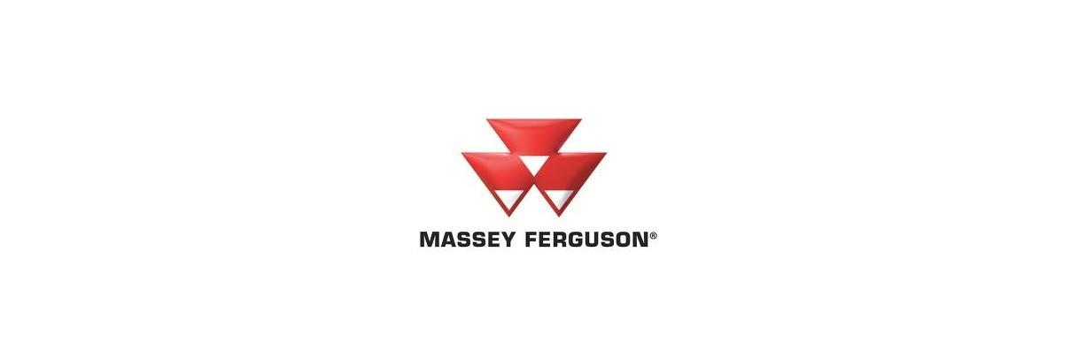 Pompes hydrauliques pour moissonneuse batteuse Massey Ferguson